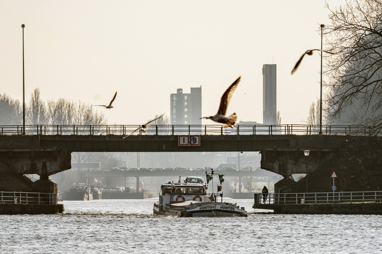 Port de Bruxelles, mars 2016© Olivier Polet